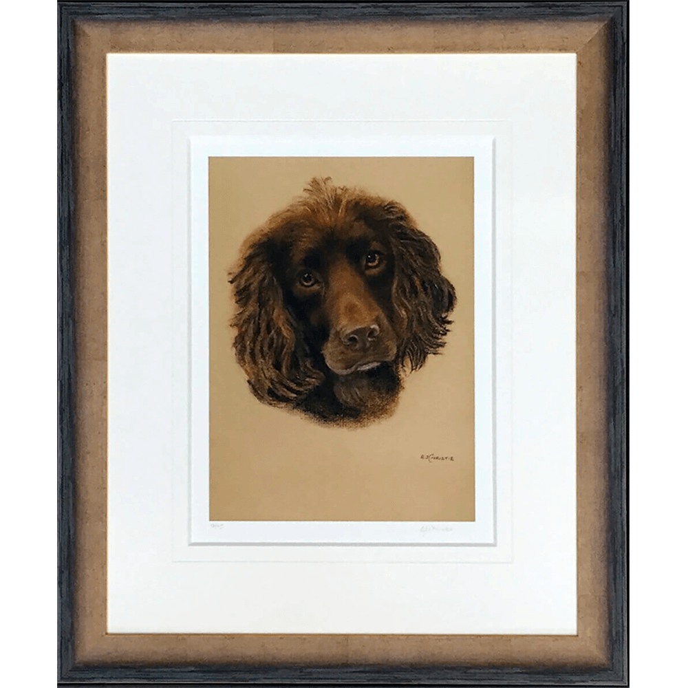 Cocker-spaniel-by-Evelyn-Christie-2 copy