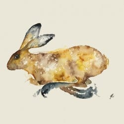 Yvonne Edwards Hare_-250×1
