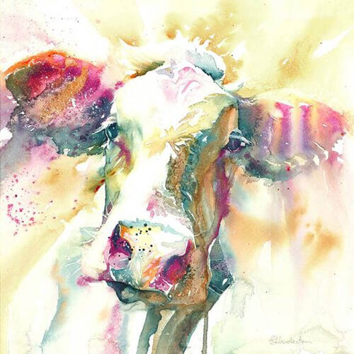 Colourful Cow by Liz Chaderton