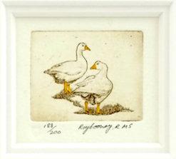 Etching Ducks