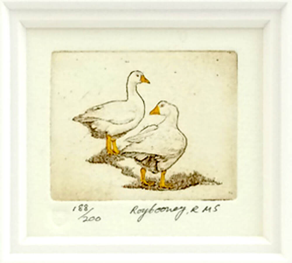 Etching Ducks