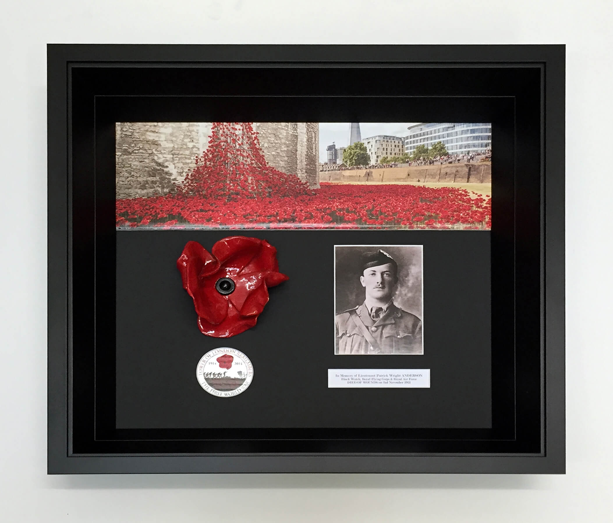 Framing Example Tower of London Poppies