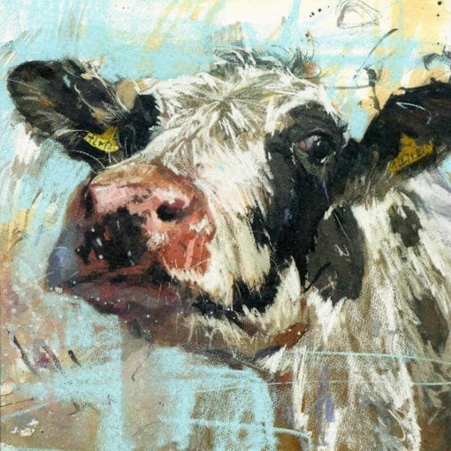 Curious Cow 1