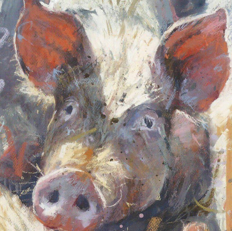 Gilling Pig