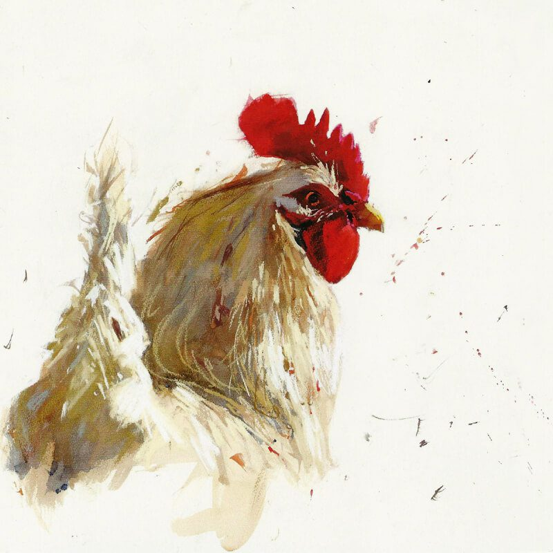 Animal greetings cards l gifts l the canvas art gallery white cockerel ba43 milkwood m4hsunfo