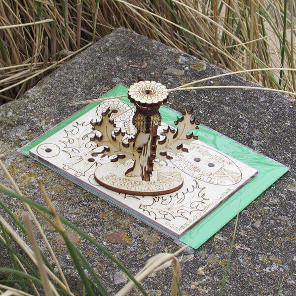 Flower Of Scotland 3D Pop-up card
