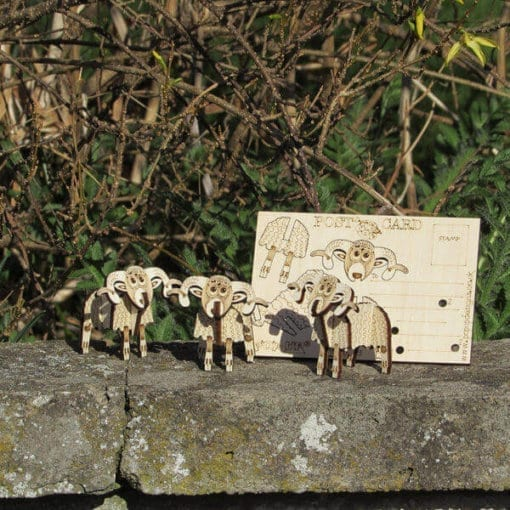 Highland Sheep 3D Pop-up card