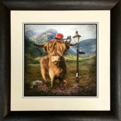 Highland Cow by Matylda Konecka