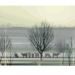 Misty Morning by Dan Crisp