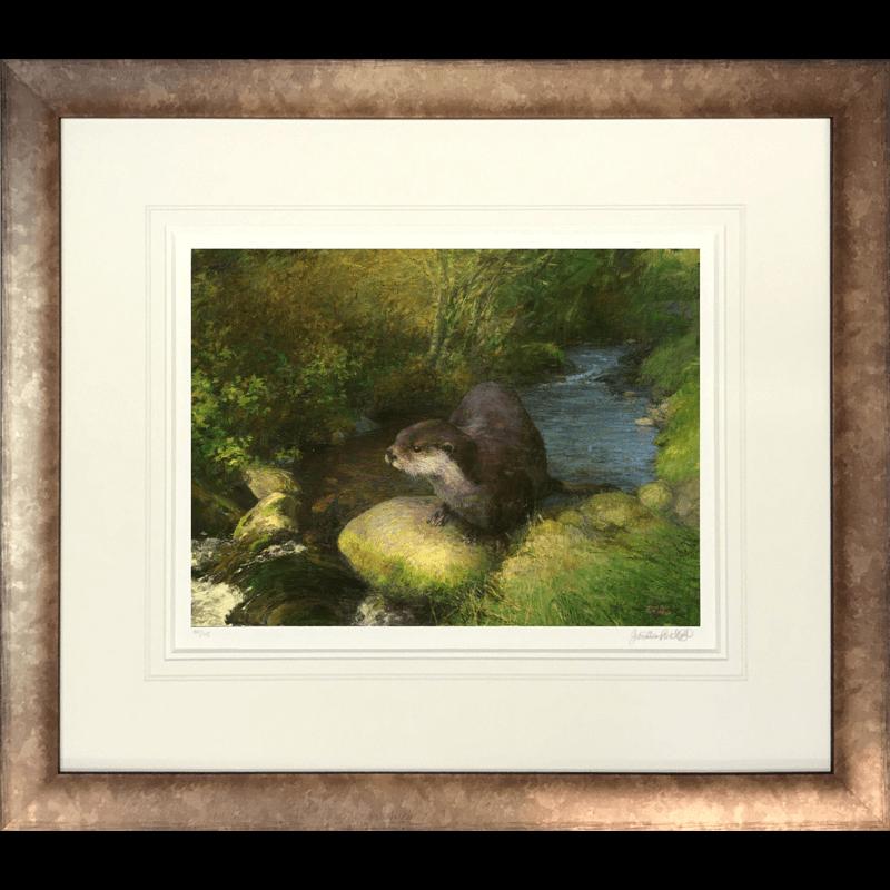 Otter by Jonathan Mitchell