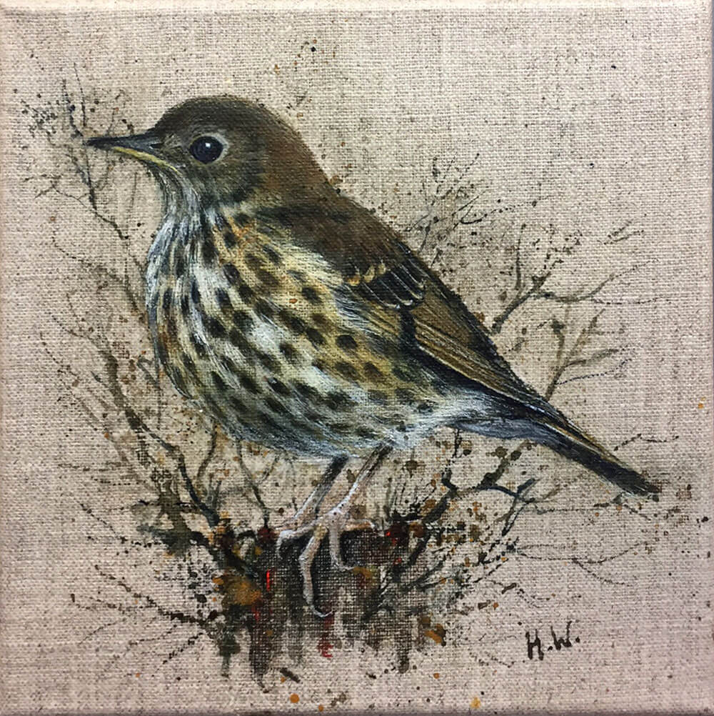 Thrush With Twigs by Helen Welsh