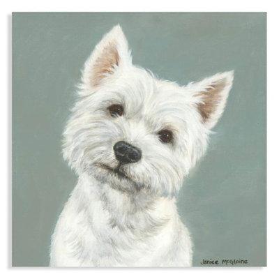 Westie by Janice McGlonie l Stretch Canvas