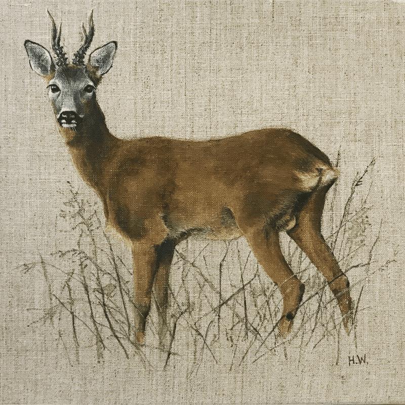 Curious Roe Buck by Helen Welsh
