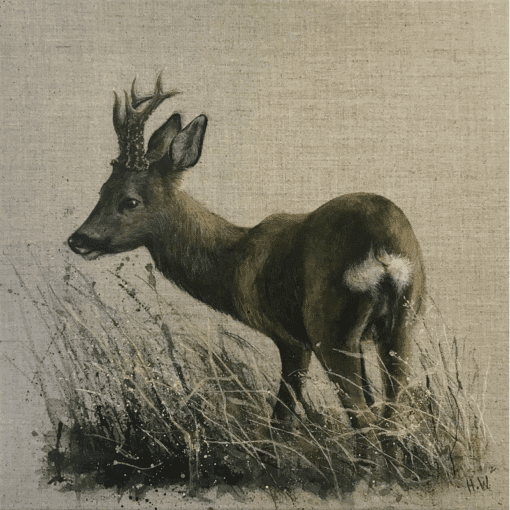 Roe Buck Rear View by Helen Welsh