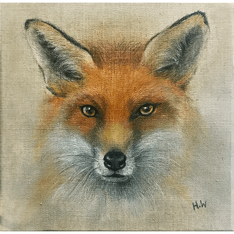 Fox by Helen Welsh