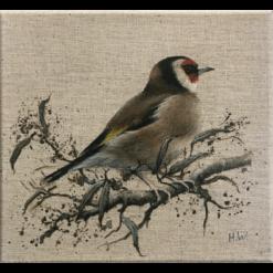 Goldfinch Acrylic on linen by Helen Welsh