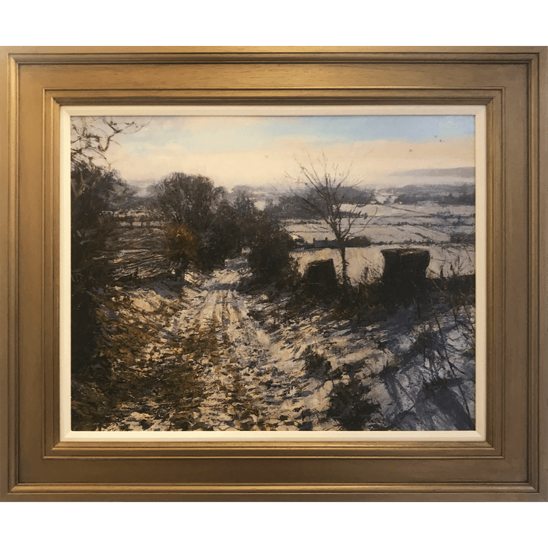 Winter Near Careston Framed