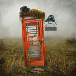 Phonebox Cottage by Matylda Konecka