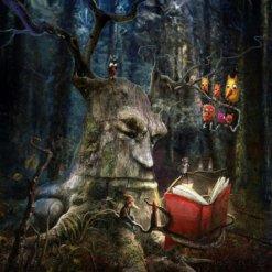 The Storyteller by Matylda Konecha